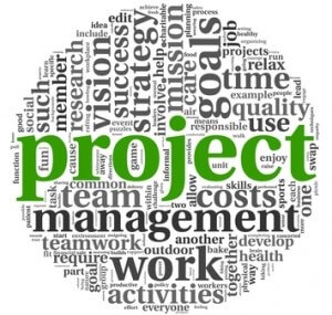 Project standards