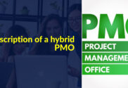 Hybrid PMO