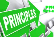 PMO Design Principles
