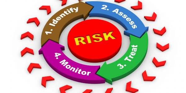 Process for identifying project risks