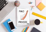 Embedding PMO process into BAU