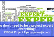 You do not have to be a project expert in everything