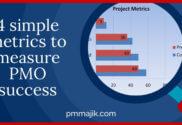 Using PMO metrics to measure success