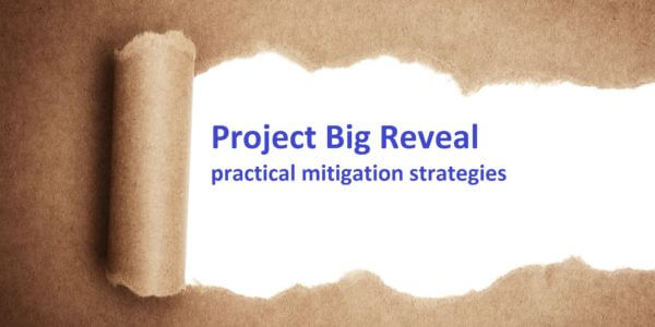 Revealing a project delivery