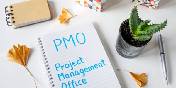Considerations for types of PMO