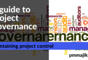 Project governance guide