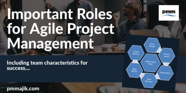 Example of agile project management roles