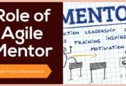 Role of Agile Mentor