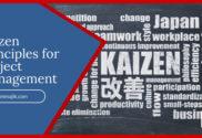 Kaizen Principles