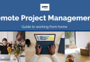 Remote project management team
