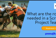 Roles in a scrum project team