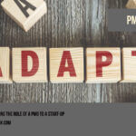Adapting the role of a PMO to a start-up