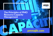 Principles PMO Capacity Management