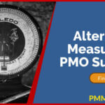 Alternative Measures of Project Management Office (PMO) Success