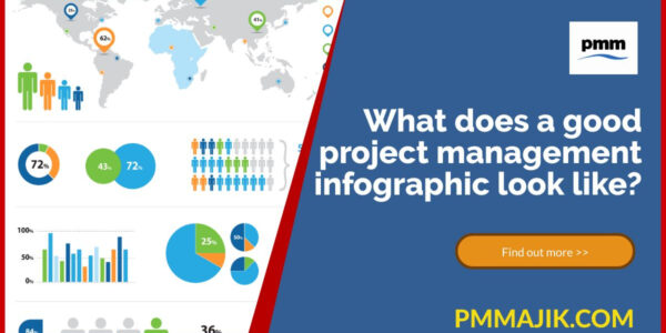 Project infographic example