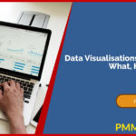 Data Visualisations in Your PMO – What, How, and Why