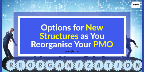 Options for when restructuring your PMO