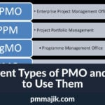 Different Types of PMO and How to Use Them