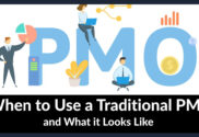 Traditional PMO