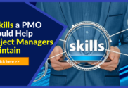 Skills development project manager