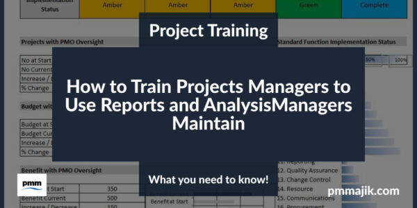 Trainig project managers